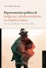 Cubierta para Representación política de indígenas y afrodescendientes en América Latina. Los casos de México, Perú y Costa Rica